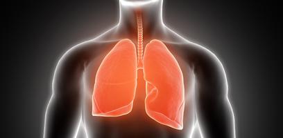 Tuberculose afeta apenas os pulmões?