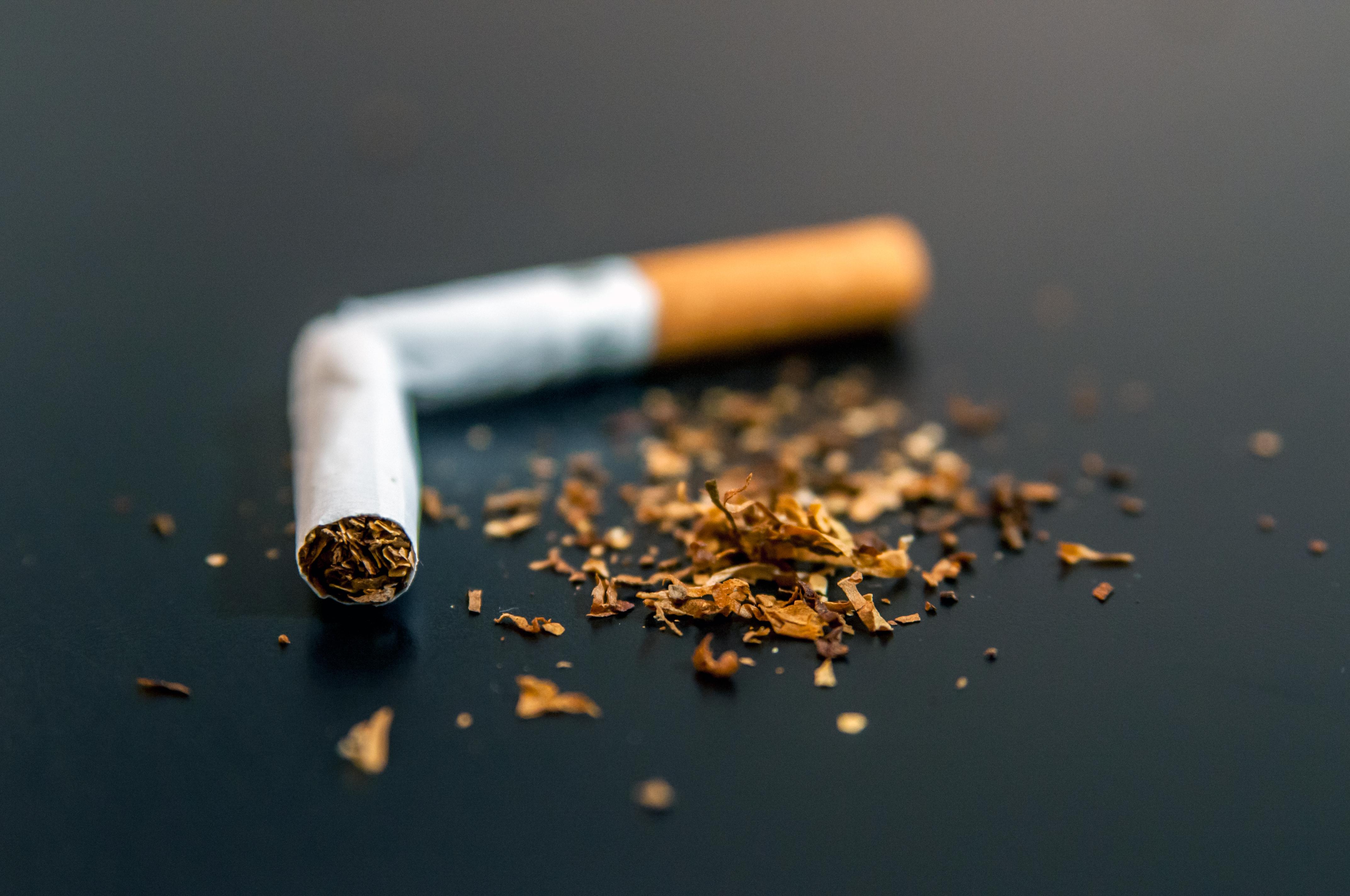 Grávidas não podem fumar